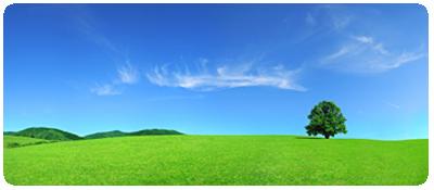 ourbusiness_environmental